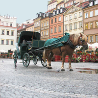 Warsaw, Poland. Tours to Warsaw, Warsaw's churches and chapels. Venue for international conferences, meetings, incentive programmes, corporate events, and VIP and individual tours.