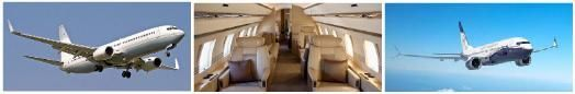 Group air charter flights